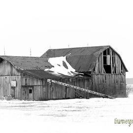 Tina M Wenger - Abandoned Culver Barn