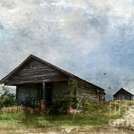 Liane Wright - Abandoned Farm Home - Kansas