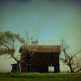 Terry Eve Tanner - Abandoned House on the Prairie