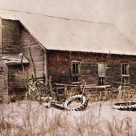Julie Hamilton - Abandoned