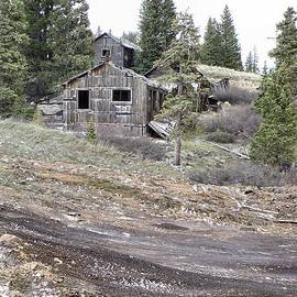 Dana Carroll - Abandoned Summitville Gold Mine Site
