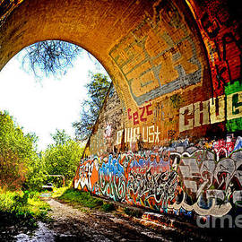 Jim Fitzpatrick - Abandoned Train Tunnel South of the Old Train Roundhouse at Bayshore near San Francisco