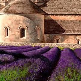 Michael Swanson - Abbey Lavender
