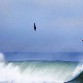 David Millenheft - Above The Surf