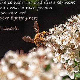 Janice Rae Pariza - Abraham Lincoln Fighting Bees