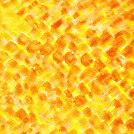 Eric Forster - Abstract Of Pumpkin