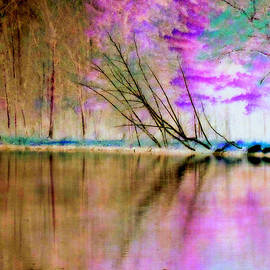 Lori Pessin Lafargue - Abstract Park Beauty