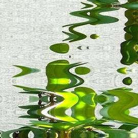 Bob and Kathy Frank - Ripples Abstract