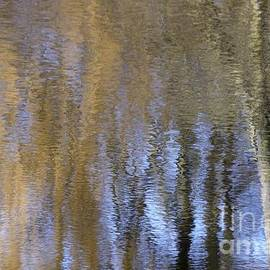 Wilton Photography - Abstract Trees 2