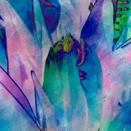 Arlene Carmel - Abstract Tulip