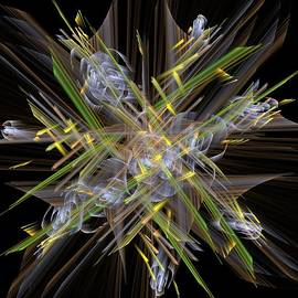 Laxmikant Chaware - Abstrcat bouquet