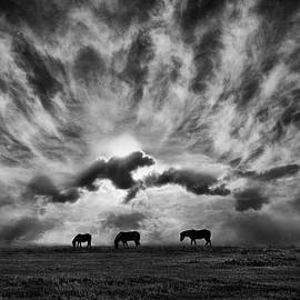 Adrian Campfield - Against an angry sky.