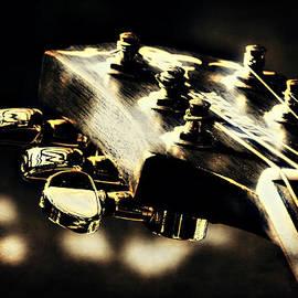 Anne Macdonald - Accoustic Guitar Head
