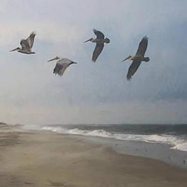 Forest Stiltner - Adagio For Waves And Seabirds