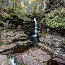 Gene Walls - Adams Falls Under Golden Autumn Leaves