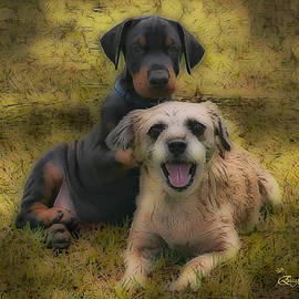 EricaMaxine  Price - ADOPTION IS THE BEST ANSWER - Featured in Big Dogs and ABC Groups