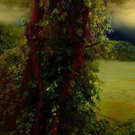 RC DeWinter - Adorned in Autumn