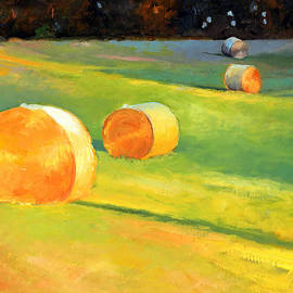 Catherine Twomey - Advance Mills Hall Bales