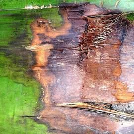 Basant Soni - Affect of Greenery