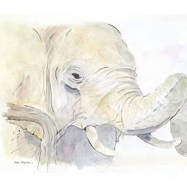 Joan Sharron - African Elephant
