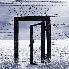 Schwartz - After the Iron Curtain