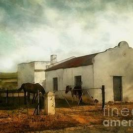 RC deWinter - Afternoon at Lone Tree Ranch