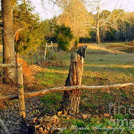 ARTography by Pamela  Smale Williams - Afternoon Orange Gold Glow on the Old Broken Fence