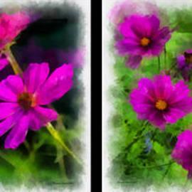 Thomas Woolworth - Afternoon Sunshine On Purple Flowers 4 Panel