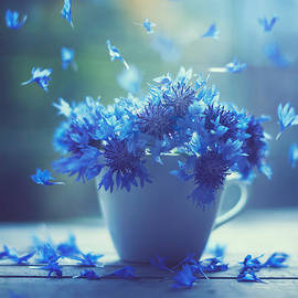 Ashraful Arefin - Air dancers