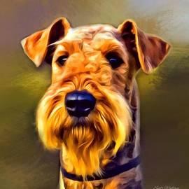 Scott Wallace  - Airedale Terrier Portrait