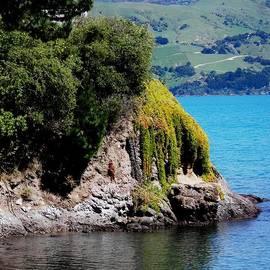 Sandra Sengstock-Miller - Akaroa Harbour New Zealand