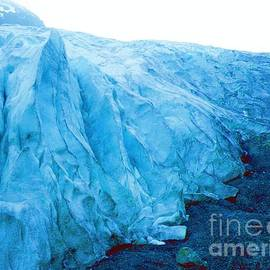 Vicky Tarcau - Alaska Glacier