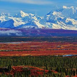 David Broome - Alaskan Autumn Wilderness