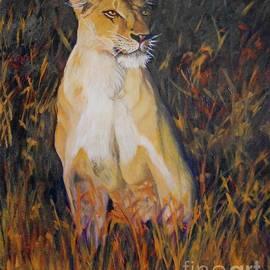 Caroline Street - Alert Lioness