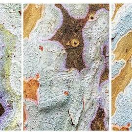 Rudy Umans - Alien Triptych Landscape