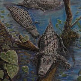 Richard Goohs - Aligators at Rest