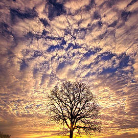 Phil Koch - All That Still Matters