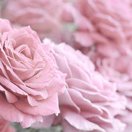 Jennie Marie Schell - All the Soft Pink Roses