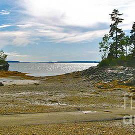 David Davies - Allen Point Maine