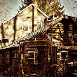 Pamela Phelps - Alligerville Blacksmith