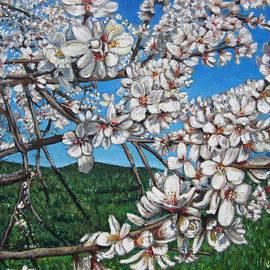 Valentina Henao - Almond Flowers