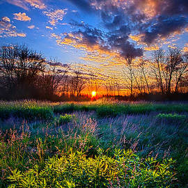 Phil Koch - Almost A Whisper