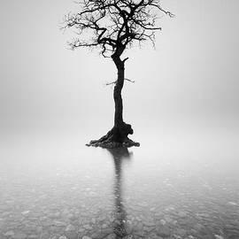Grant Glendinning - Alone