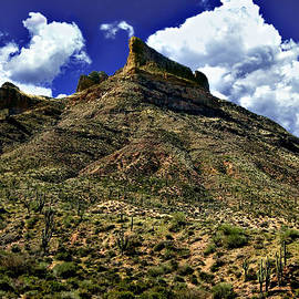 Bob and Nadine Johnston - Along Apache Trail Arizona