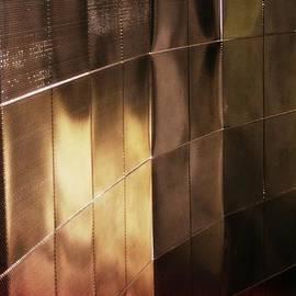CJ Anderson - Aluminum Reflections