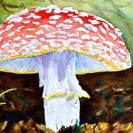 Beverley Harper Tinsley - Amanita and Lacewing
