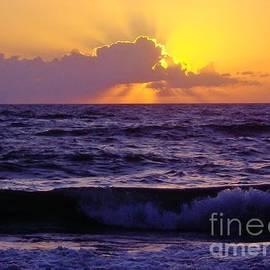 D Hackett - Amazing - Florida - Sunrise