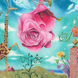Mitch Nolte - Amazon Rose
