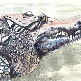 Richard Goohs - American Crocodile
