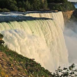 Eve Spring - American Falls